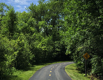 Woods & Trails<br />in Carver County