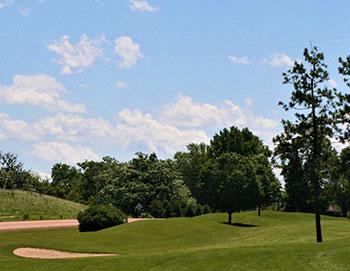 Golf in Carver County, MN