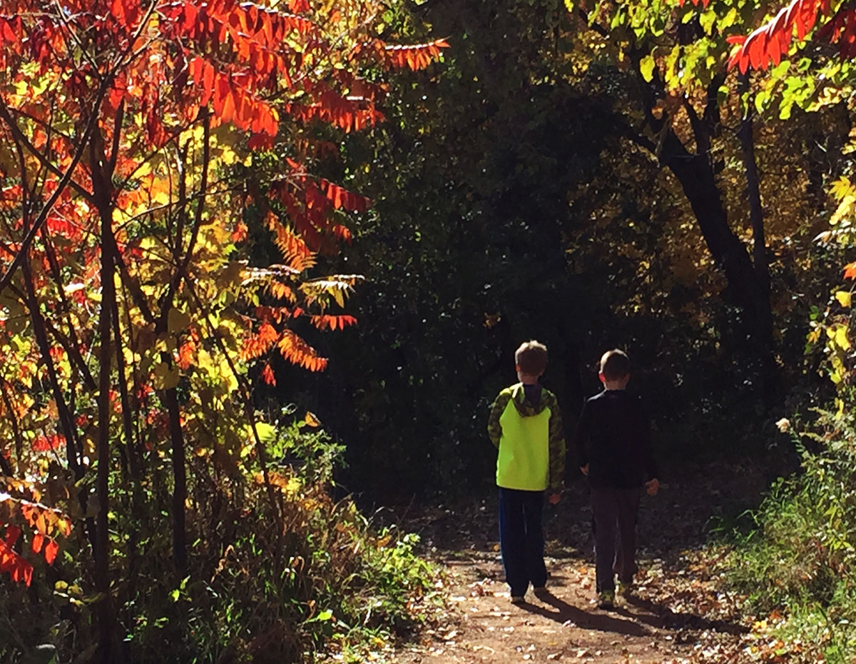Carver County Trails